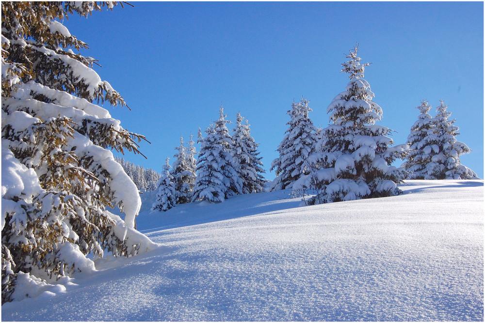 Vacances ! Du 25 décembre au 8, de retour le mercredi 9 !